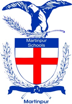 Christian-Girls-HS-Martinpur-logo